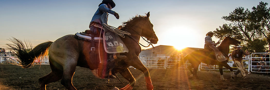 It's the ropes and the reins, and the joy and the pain. And they call the thing rodeo - Garth Brooks