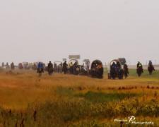 BC wagons